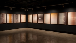 Installation view, Dawn Ng, 'Perfect Stranger'